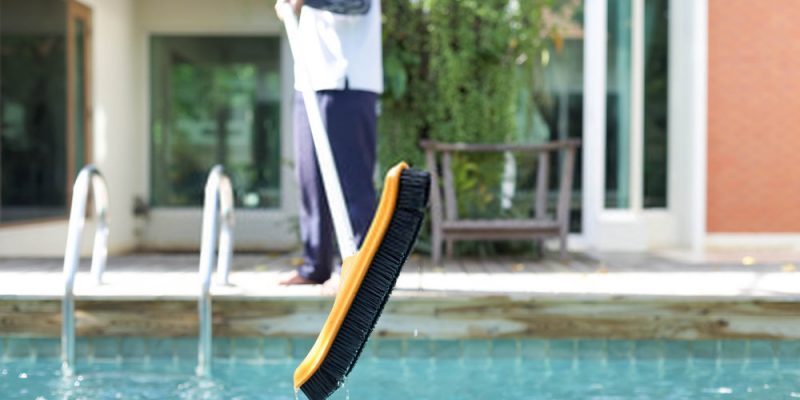 Pool Brush